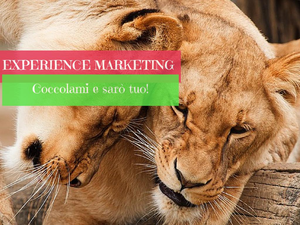web marketing, social media marketing